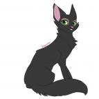 Kittylover16063