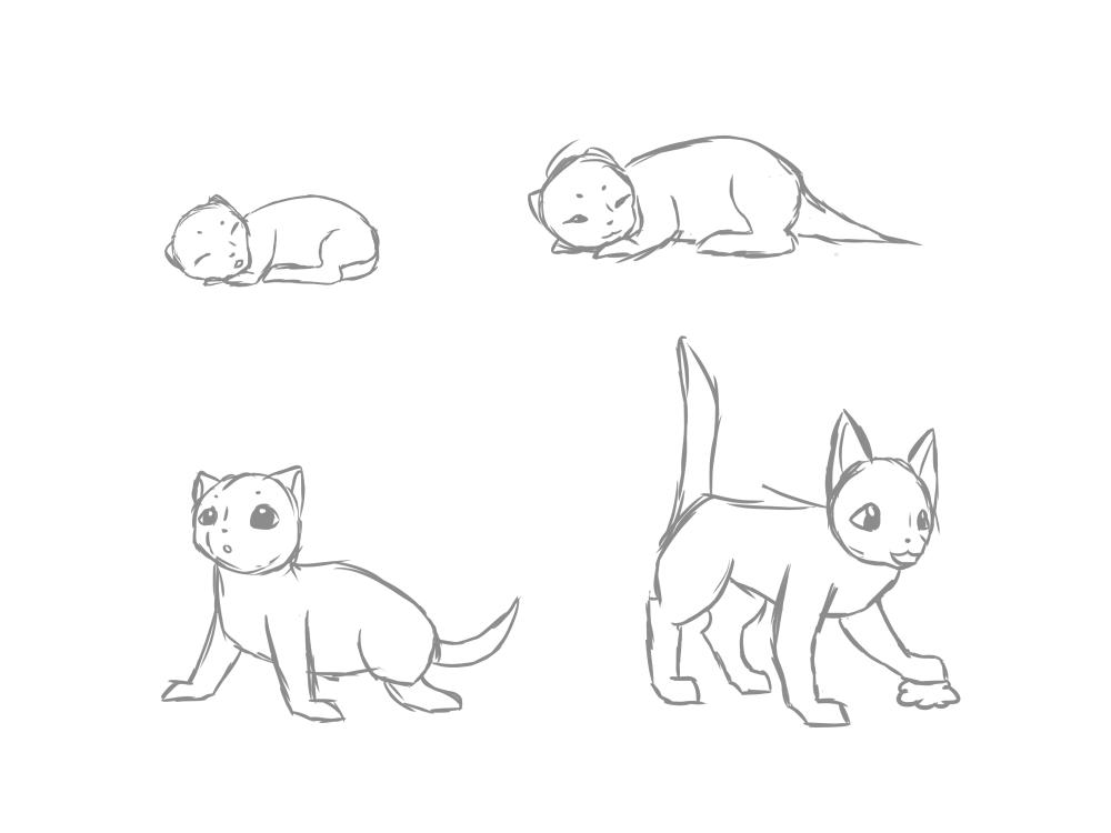 Kittens!!!.thumb.png.e0c47aa8758e7adb25103f2f744cb773.png