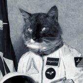 Spacestar TheThundersuncat