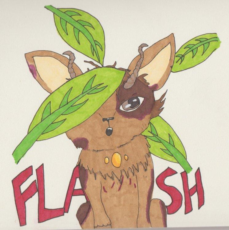 Flash.thumb.jpg.16d8efc555bc537abbe7b408d0dd9dff.jpg