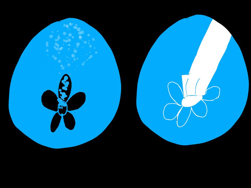 2113354497_Pollinatorsuggestion.thumb.png.b7a00fc4d7e3b8ad0fd2d08310dbb909.png